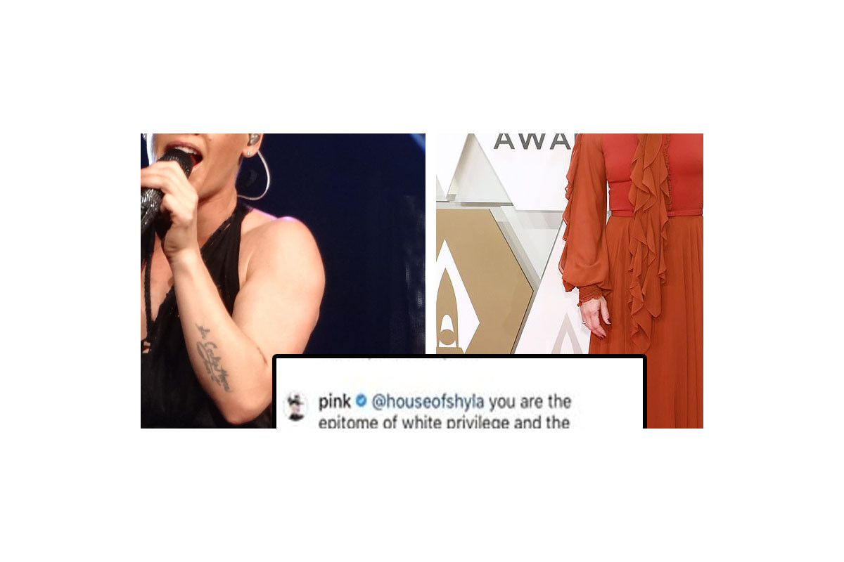 """Pink defends herself from Instagram trolls after slamming the """"All Lives Matter"""" movement"""