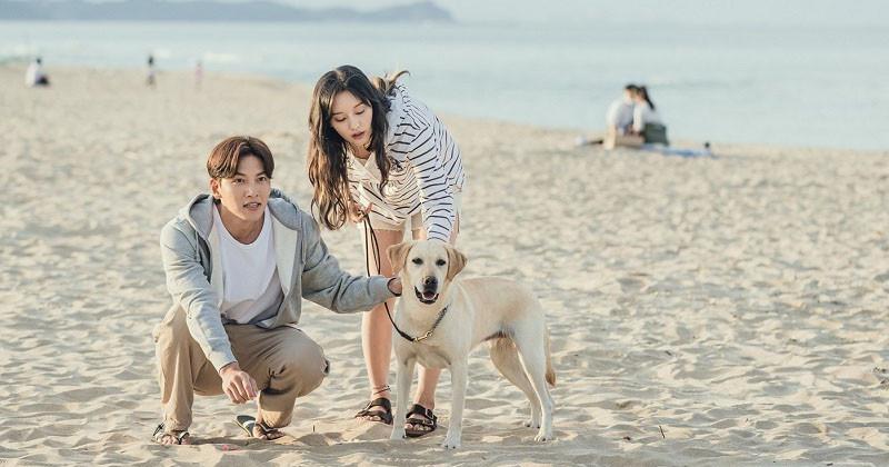"Ji Chang Wook And Kim Ji Won's  Drama ""Lovestruck In The City"" Reveals  Christmas Poster"